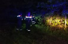 Пензенские спасатели вывели из леса заблудившегося мужчину