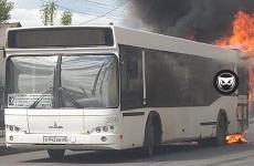 В Пензе прямо на проезжей части сгорел автобус. ФОТО