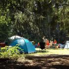 Названы возможные сроки открытия детских лагерей в Пензе