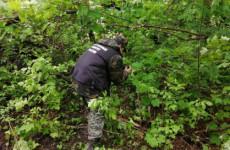 Появились фото с места обнаружения тела 14-летней пензячки