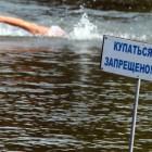 Зареченец утонул на «Лесном» пруду