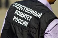 Появились подробности гибели ребенка в Пензенской области