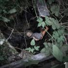 Могилы ожидают трупов: жителей Пензы подстерегает смертельная опасность