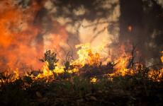 В двух районах Пензенской области прогнозируется высокая пожарная опасность