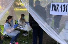 Голосование по поправкам в Конституцию: в Пензе явка составляет 42%