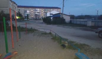В Пензенской области на спортивной площадке скончался подросток