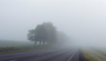 Пензенцев предупреждают о сильном тумане 11 июля