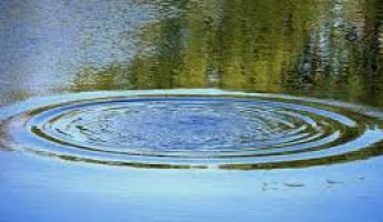 В Пензенской области вытащили из водоема разлагающийся труп
