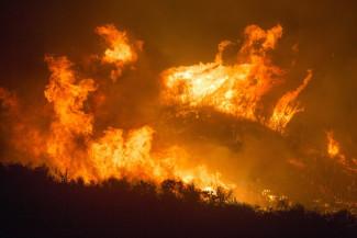 В четырех районах Пензенской области прогнозируется 4 класс пожарной опасности