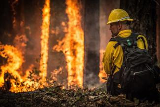 Пензенцев предупреждают о высокой пожарной опасности