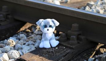 В Пензенской области чуть не попала под поезд двухлетняя девочка