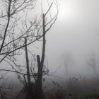 МЧС предупреждает об ухудшении погоды в Пензенской области