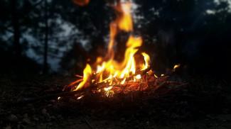 В каких районах Пензенской области прогнозируется высокая пожароопасность?