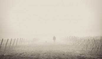 Пензенцев предупреждают о тумане и сильном ветре 4 августа