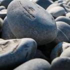 Жителя Пензенской области зверски избили камнем во время пьянки