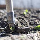 В Пензенской области пенсионера избили черенком от лопаты