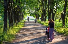 В Кузнецке жители сами могут дать название строящемуся ФОКу и скверу