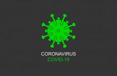 В Пензенской области выявили 55 новых случаев коронавируса