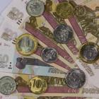 В Пензе семьям с детьми выплатили 10 миллионов рублей