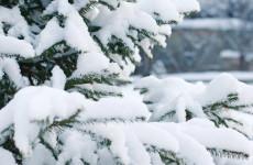 Длинные каникулы: пензяков ждут 16 выходных в начале года