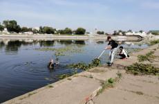 Пензенцы своими силами убрались на берегах реки Суры