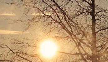 22 сентября в Пензенской области ожидается потепление