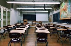 Одна из школ в Пензенской области перешла на дистанционное обучение