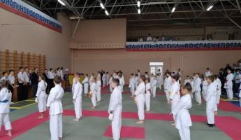 В Пензе сформировали сборную команду по всестилевому каратэ