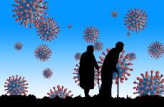 Новые случаи коронавируса выявлены в Пензе, Заречном и еще 8 районах