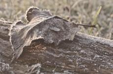 В Пензенской области ожидается минусовая температура