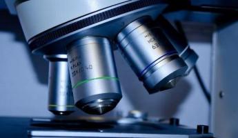 В Пензенской области провели более 313 тысяч тестов на коронавирус
