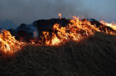 В Пензенской области за сутки было зафиксировано 18 пожаров