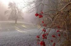 20 октября в Пензенской области похолодает до минус 2 градусов