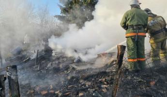 В Пензенской области при пожаре в дачном доме погиб мужчина