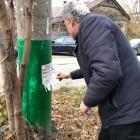 На двух улицах Пензы очистили от объявлений фонарные столбы