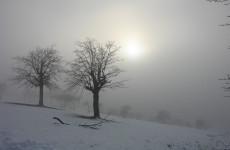 Пензенцев предупреждают о сильном тумане и гололедице 27 ноября