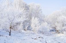 Пензенцев предупреждают об аномально-холодной погоде 4 декабря