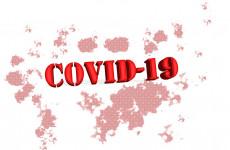 Новые случаи коронавируса выявлены в Пензе, Заречном и еще 14 районах