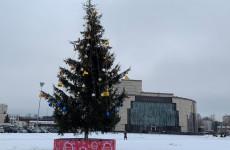 На Юбилейной площади Пензы впервые появилась новогодняя елка