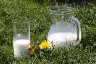 В Пензенской области молоко доят лучше всех