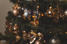 Пензенцы смогут отдать свою елку на благое дело