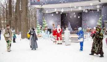 В пензенском парке прошло заключительное новогоднее представление