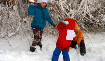 В пензенском Детском парке состоятся два зимних мероприятия