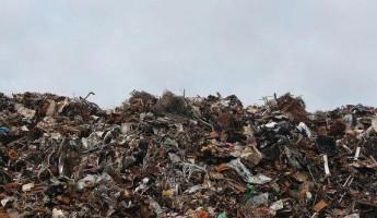 В Пензе завели дело о картельном сговоре между сборщиками мусора
