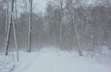 Пензенцев предупреждают о метели и сильном снегопаде 14 января