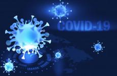 Пензенская область вновь побила рекорд по числу случаев коронавируса