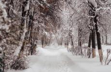 20 января в Пензенской области сохранится сильный мороз