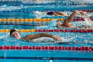 Трудовые коллективы Пензы посоревнуются в плавании