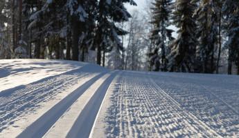 Какая погода ожидает пензенцев 21 января?