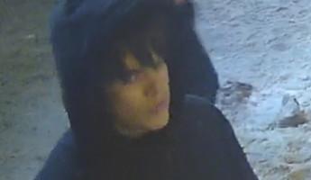 В Пензе разыскивают подозреваемого в ограблении пенсионерки